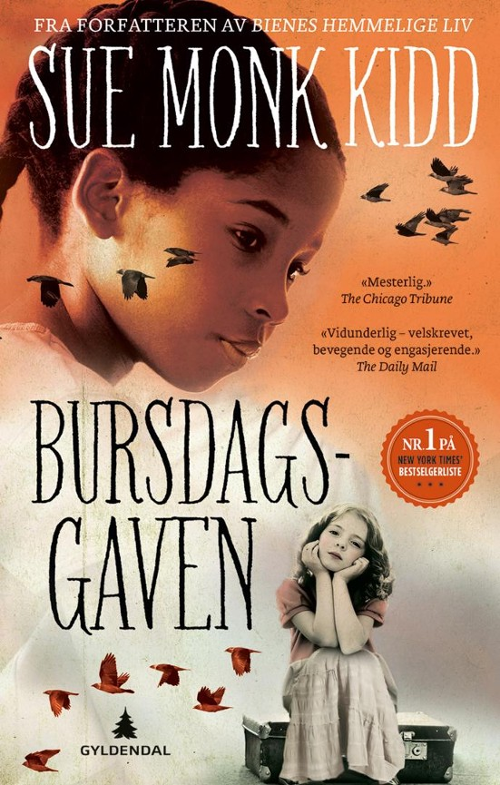 Bursdagsgaven - Sue Monk Kidd