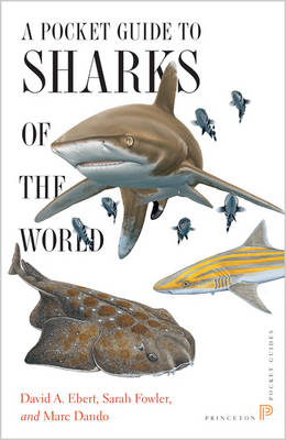 A Pocket Guide to Sharks of the World - David A. Ebert