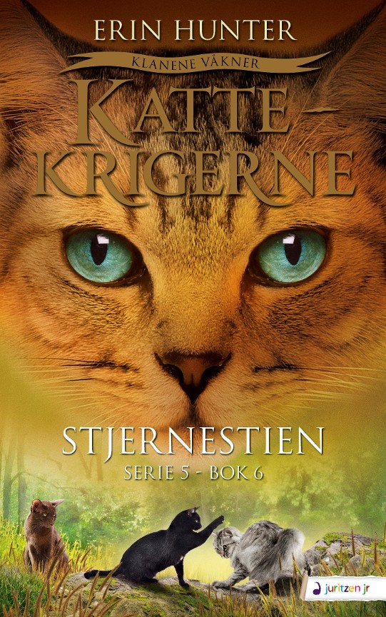 Stjernestien - Erin Hunter