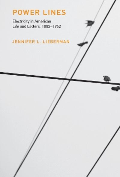 Power Lines - Jennifer L. Lieberman