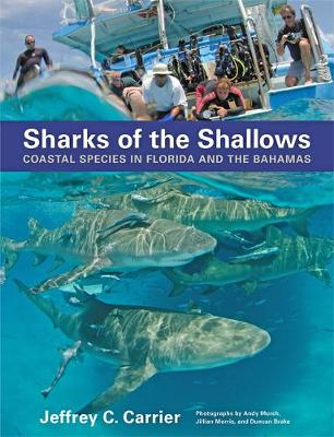 Sharks of the Shallows - Jeffrey C. Carrier