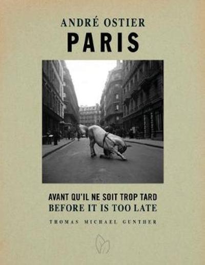 Paris, Before It Is Too Late - Thomas Michael Gunther