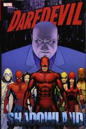 Daredevil: Shadowland Omnibus - Andy Diggle Anthony Johnston Zeb Wells