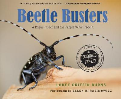 Beetle Busters - Loree Griffin Burns