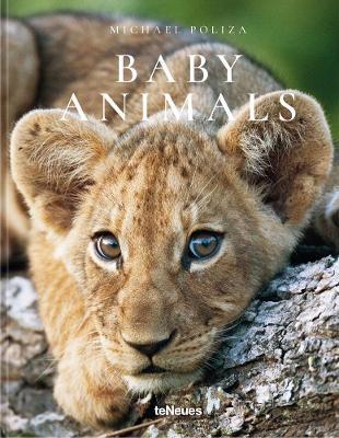 Baby Animals - Michael Poliza