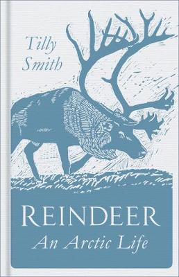 Reindeer - Tilly Smith