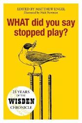 WHAT Did You Say Stopped Play? - Matthew Engel Nick Newman