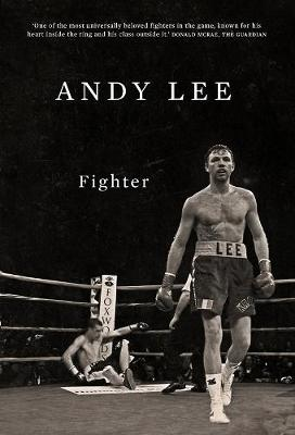 Fighter - Andy Lee
