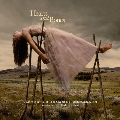 Hearts and Bones - Tom Chambers