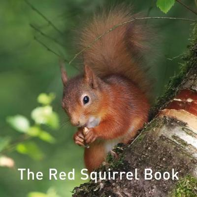 The Red Squirrel Book - Jane Russ
