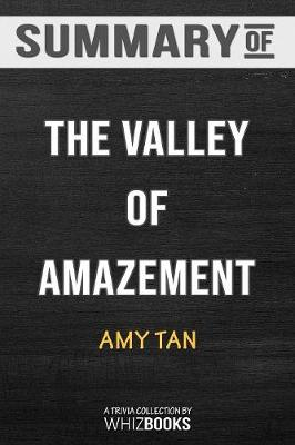 Summary of the Valley of Amazement - Whizbooks