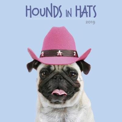 Hounds in Hats 2019 Calendar - Ardea Picture Library