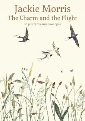 The Charm and the Flight Postcard Pack - Jackie Morris