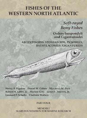 Soft-rayed Bony Fishes - Orders Isospondyli and G - Part 4 - Henry B. Bigelow
