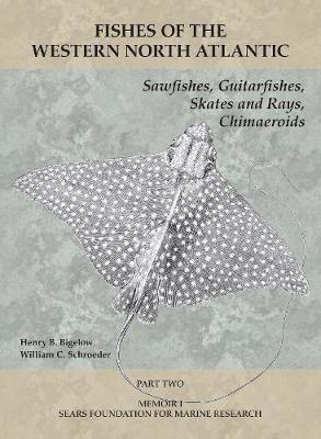Sawfishes, Guitarfishes, Skates and Rays, Chimae -  Part 2 - Henry B. Bigelow