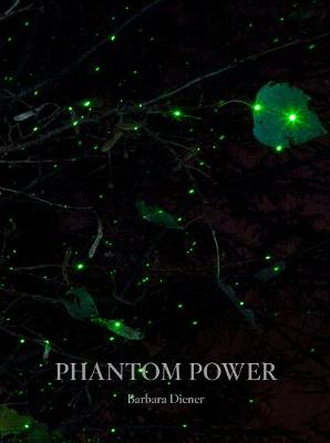 Phantom Power - Barbara Diener