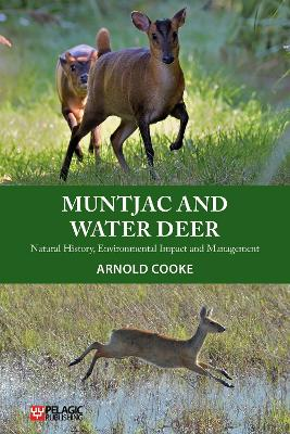 Muntjac and Water Deer - Arnold Cooke