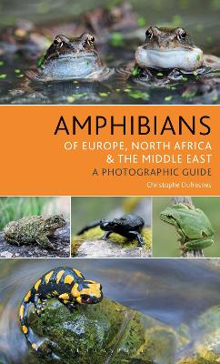 Amphibians of Europe, North Africa and the Middle East - Christophe Dufresnes