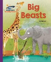 Reading Planet - Big Beasts - Purple: Galaxy - Katie Daynes
