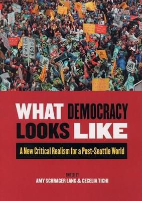 What Democracy Looks Like - Amy Schrager Lang