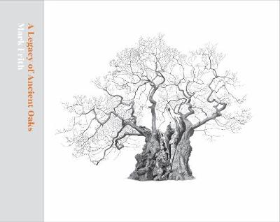 A Legacy of Ancient Oaks - Mark Frith