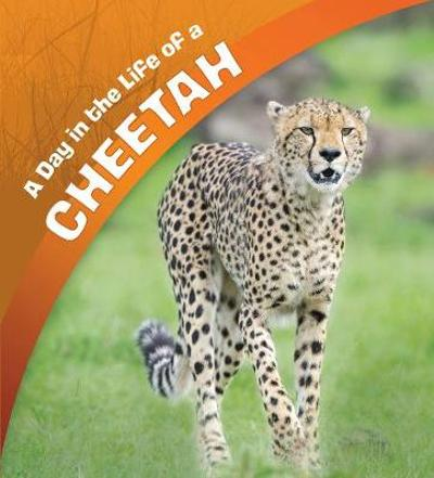 A Day in the Life of a Cheetah - Lisa J. Amstutz