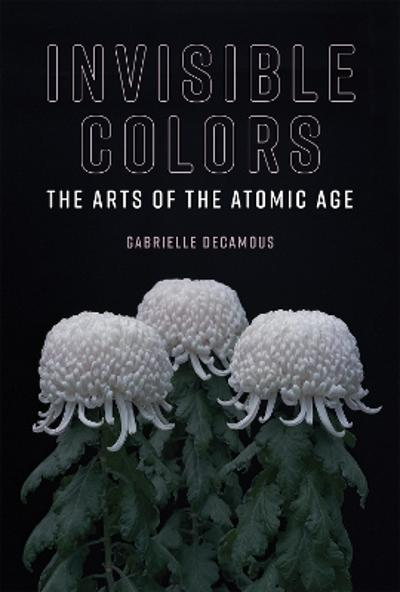 Invisible Colors - Gabrielle Decamous