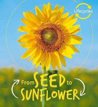Lifecycles: Seed to Sunflower - Camilla de la Bedoyere