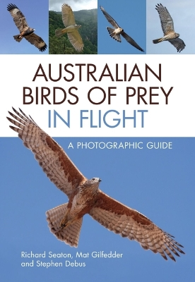 Australian Birds of Prey in Flight - Richard Seaton