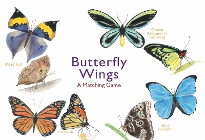 Butterfly Wings - Christine Berrie