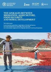 The linkages between migration, agriculture, food security and rural development - Food and Agriculture Organization