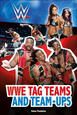WWE Tag-Teams and Team-Ups - DK