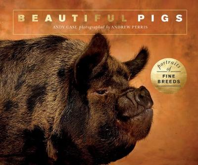 Beautiful Pigs - Andy Case