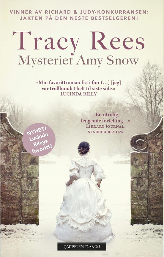 Mysteriet Amy Snow - Tracy Rees