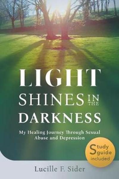 Light Shines in the Darkness - Lucille F Sider