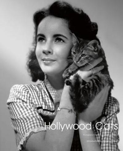 Hollywood Cats - Gareth Abbott