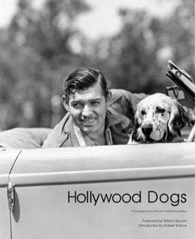 Hollywood Dogs - Gareth Abbott