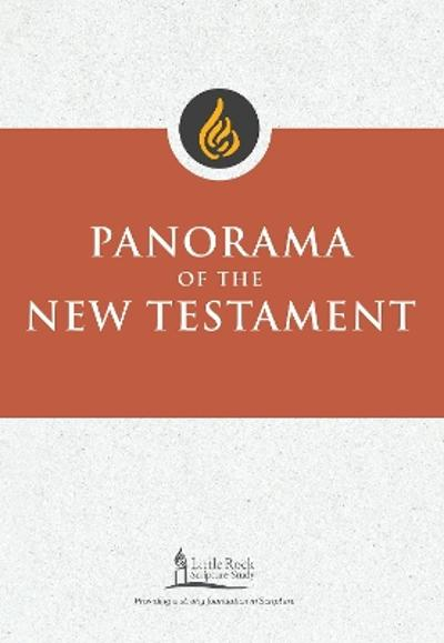 Panorama of the New Testament - Stephen J. Binz