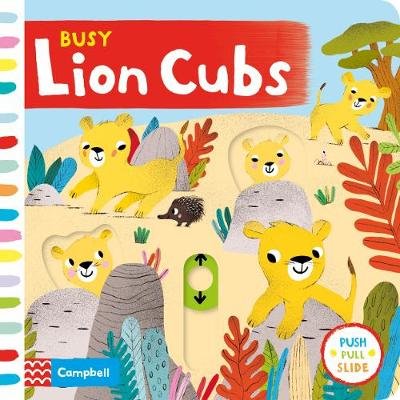 Busy Lion Cubs - Campbell Books