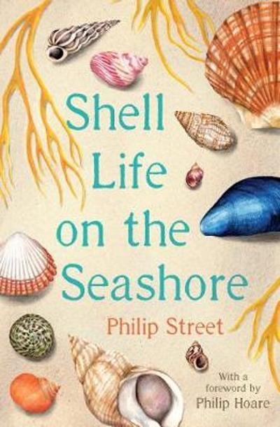 Shell Life on the Seashore - Philip Street