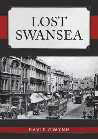 Lost Swansea - David Gwynn