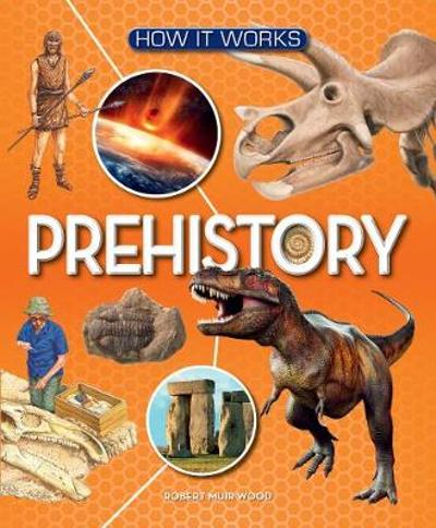 How It Works: Prehistory - Robert Muir Wood