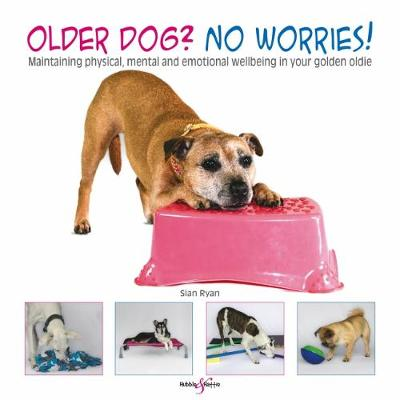 Older dog? No worries! - Sian Ryan