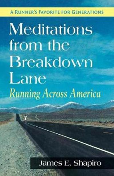 Meditations from the Breakdown Lane - James E Shapiro