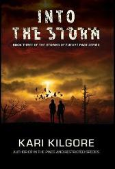Into the Storm - Kari Kilgore