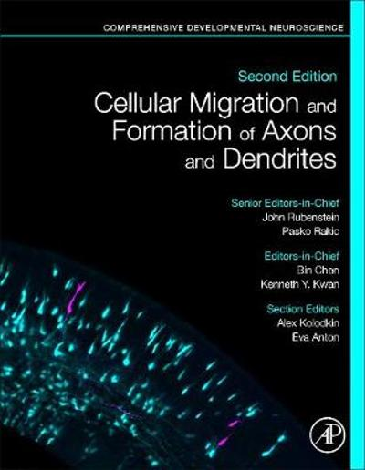 Cellular Migration and Formation of Axons and Dendrites - John Rubenstein