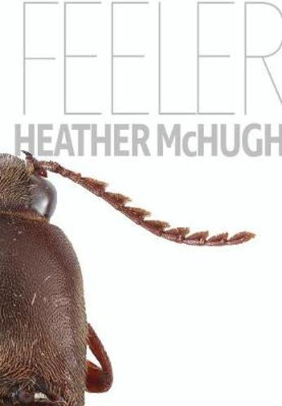 Feeler - Heather McHugh