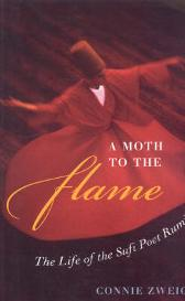 A Moth to the Flame - Connie Zweig