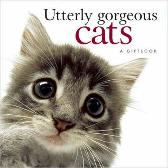 Utterly Gorgeous Cats - Pam Brown