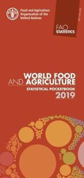World food and agriculture statistical pocketbook 2019 - Food and Agriculture Organization
